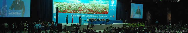 Statements made during COP 14 and CMP 4