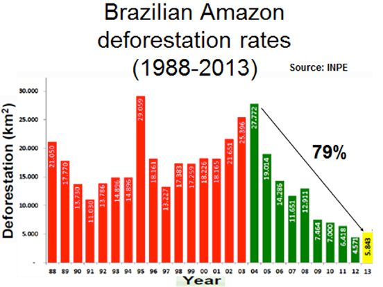 Deforestation | Geography of Brazil