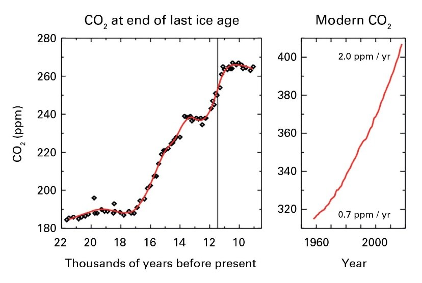 Atmospheric concentration of CO2 grows rapidly