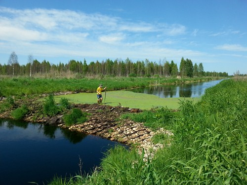 russia peatlands small