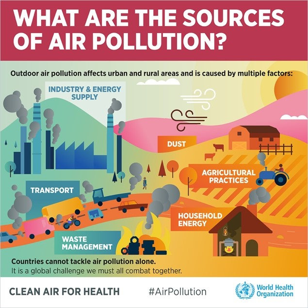Infographic: What are the sources of air pollution?