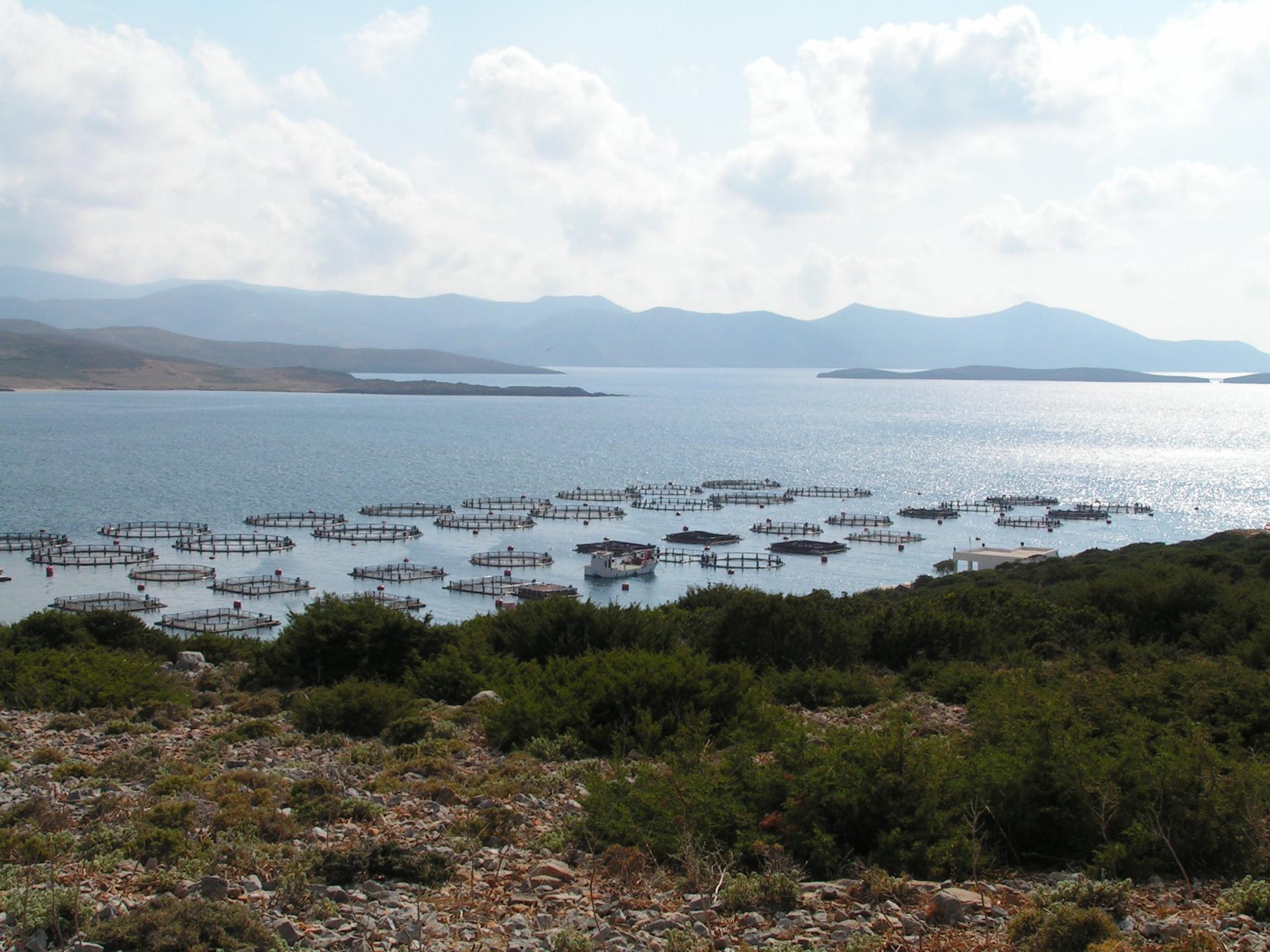 JPI oceans project