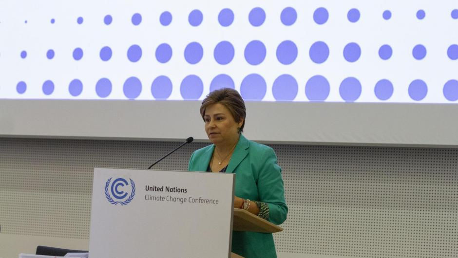 ES at the meeting with the High-Level Climate Champions